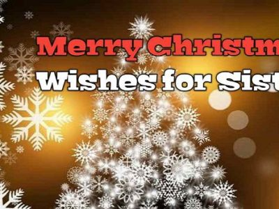 {100+} Merry Christmas Wishes, Messages, Quotes for Sister