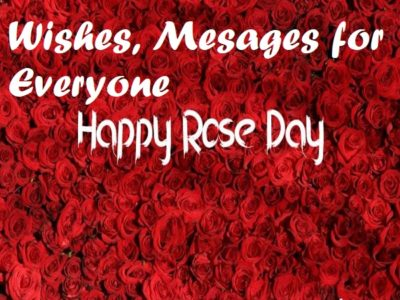 200+ Rose Day Wishes, Messages, Quotes for Everyone | Status
