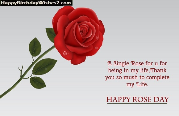 rose day quotes for him