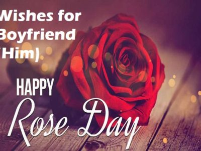 🌹 Rose Day Wishes, Messages, Quotes, Status For Boyfriend (Him)