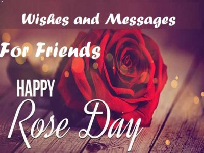 Best Rose Day Wishes, Messages, Quotes for Friends | Status