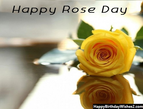 happy rose day hubby images