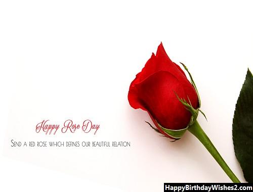 happy rose day janu image