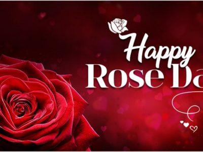 {2022} Amazing Rose Day Shayari, Quotes, Status in Hindi