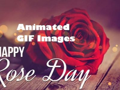 Best Happy Rose Day Gif Images for BF, GF, Husband, Wife