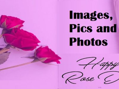 Best Rose Day Images, Photos, Pics, Wallpapers for Everyone