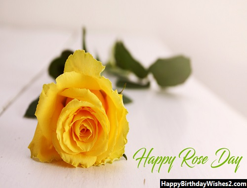 rose day images with quotes