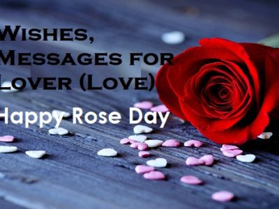 Best 100 Rose Day Wishes, Messages, Quotes for Love / Lover