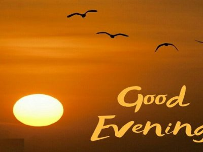 {35+} Best Good Evening GIF, Animated Images for Everyone