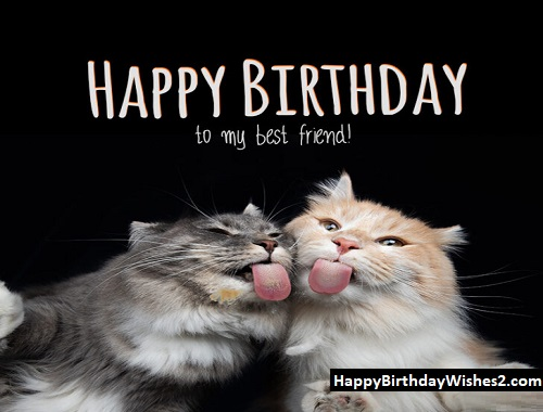 happy birthday to special friend images