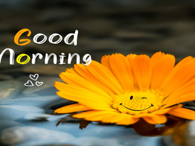 {120+} Best Inspirational Good Morning Wishes, Messages, Quotes | Motivational Quotes